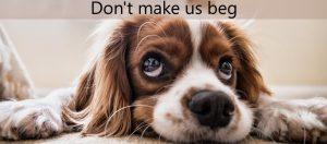 Don't make us beg